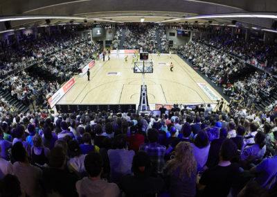eoa-basketball